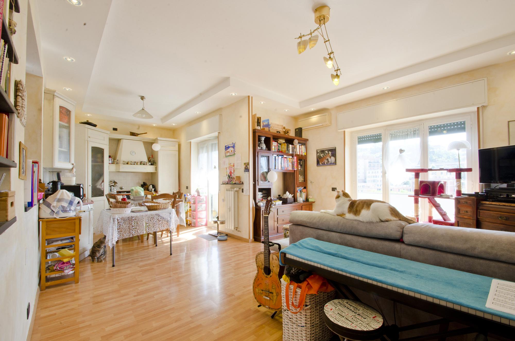 agenzia immobiliare agenzie immobiliari cerco casa san